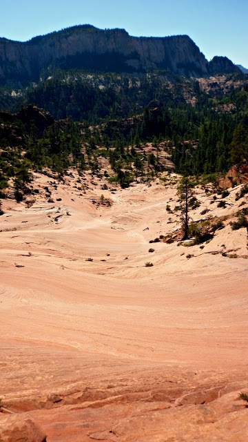 A canyon with Coral Pink Sand Dunes State Park in the background