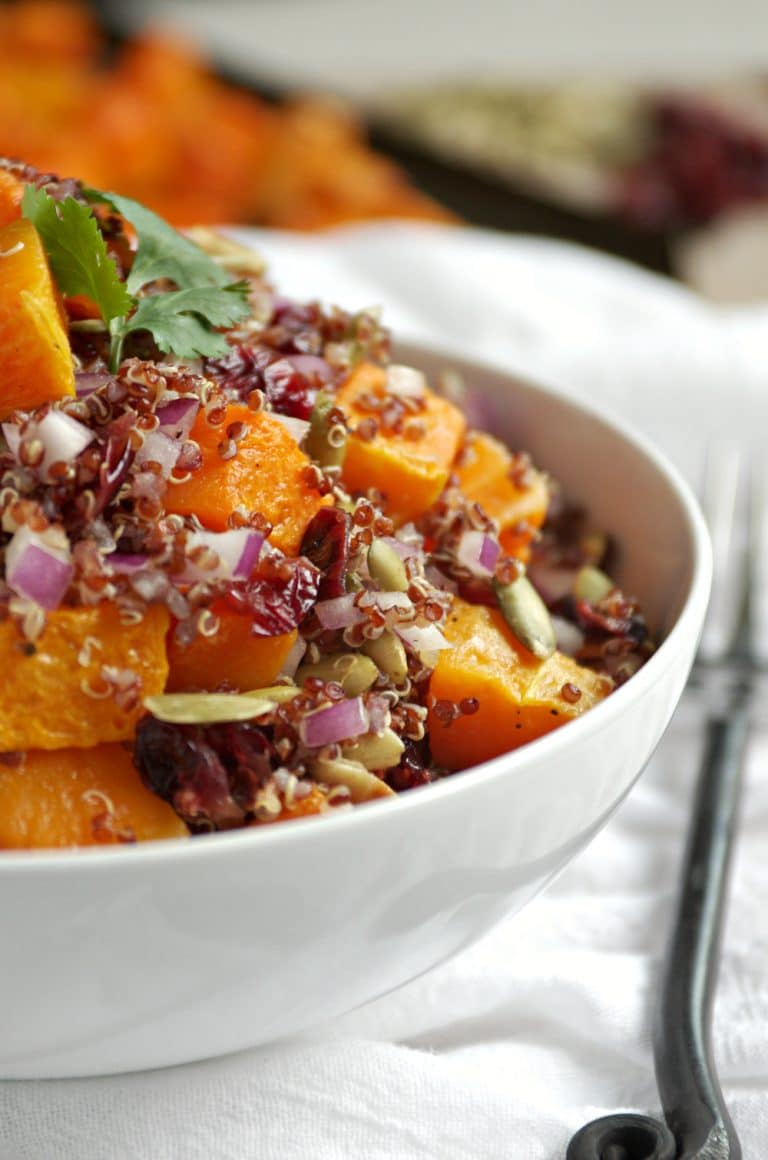 close up of bowl full of Quinoa, Butternut Squash and Cranberry Salad with Balsamic Vinaigrette