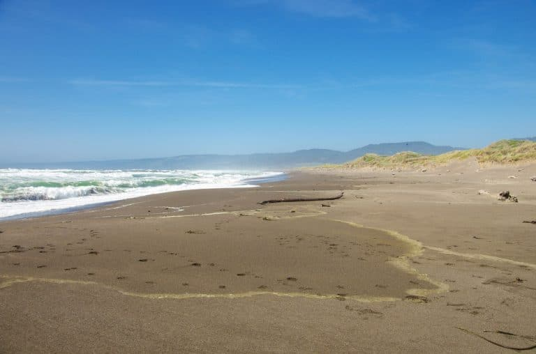 A view of a beach