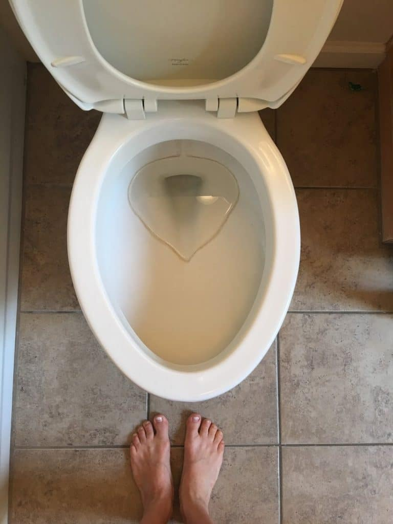 How to Remove Hard Water Stains from Toilets - The Forked Spoon